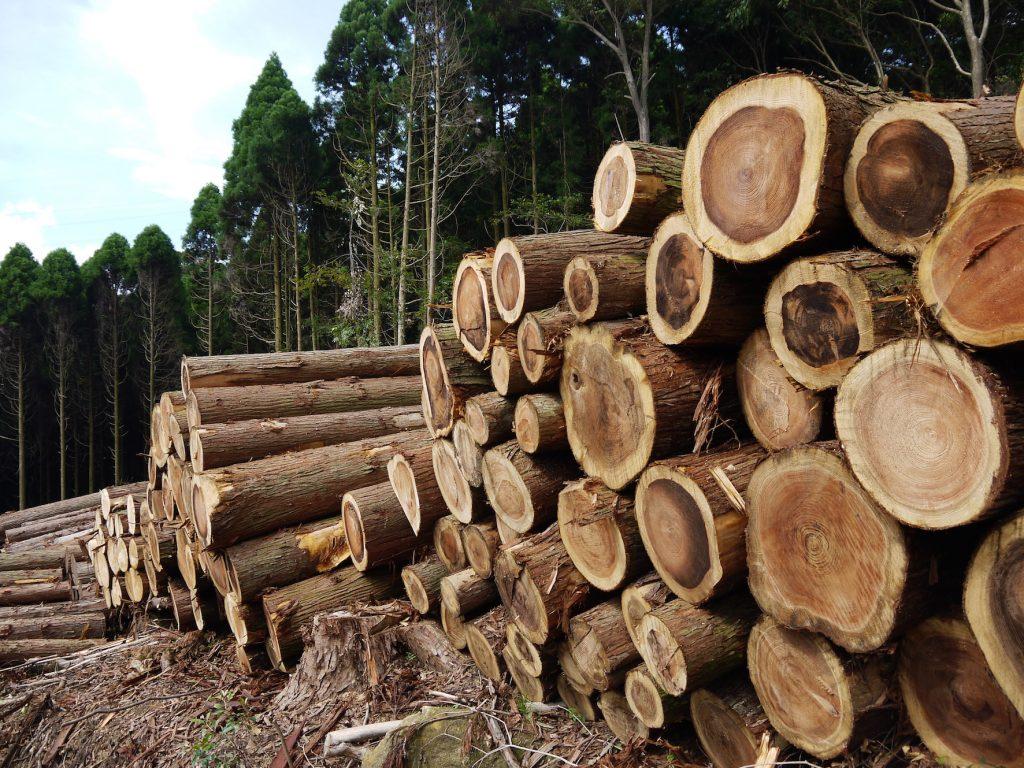 つながる林業について