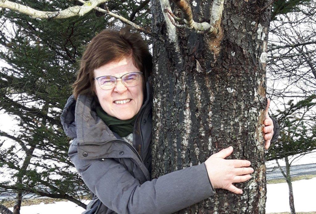 「木を抱きしめる」